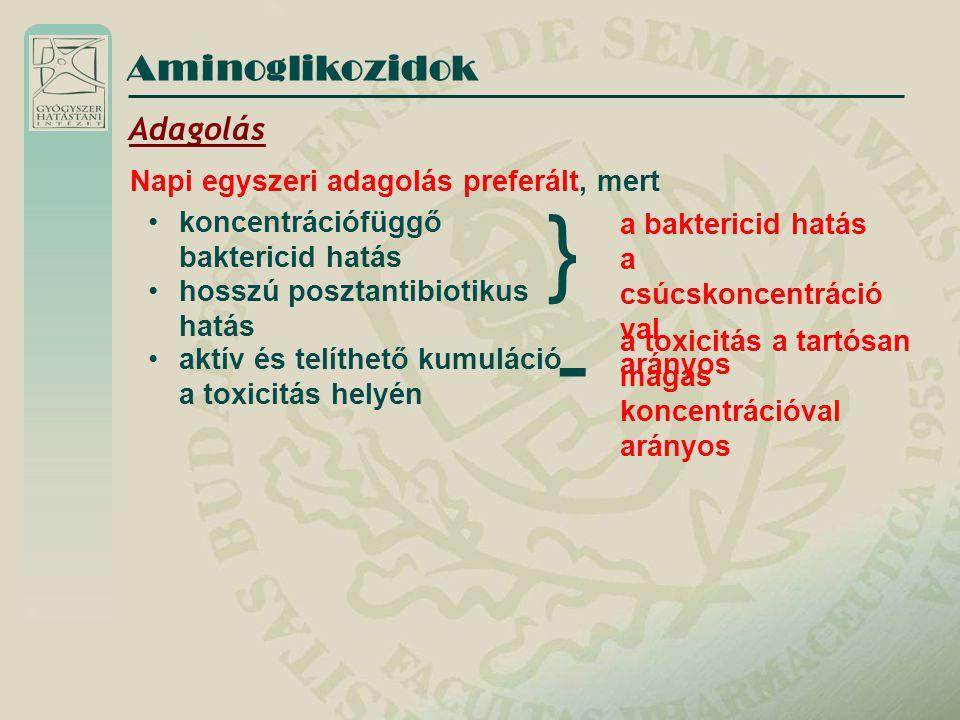 } - Aminoglikozidok Adagolás Napi egyszeri adagolás preferált, mert