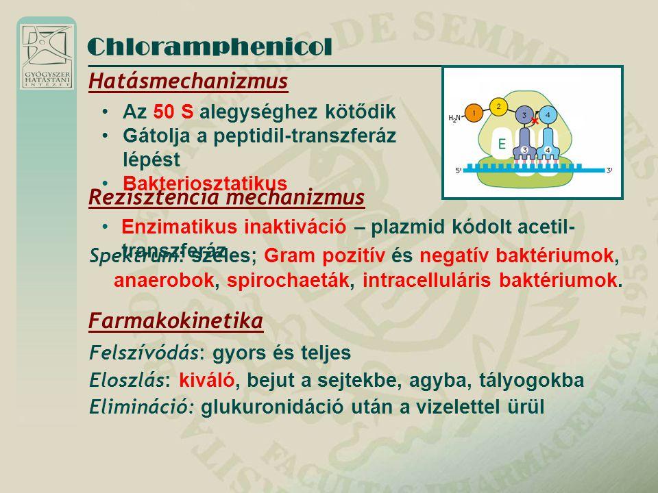 Chloramphenicol Hatásmechanizmus Rezisztencia mechanizmus