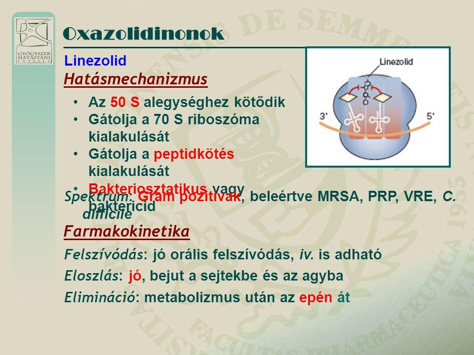 Oxazolidinonok Hatásmechanizmus Farmakokinetika Linezolid