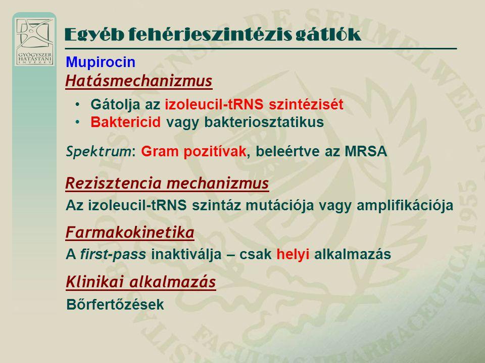 Egyéb fehérjeszintézis gátlók