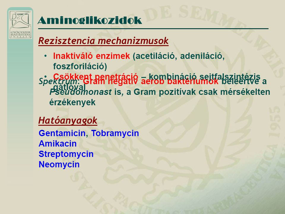 Aminoglikozidok Rezisztencia mechanizmusok Hatóanyagok