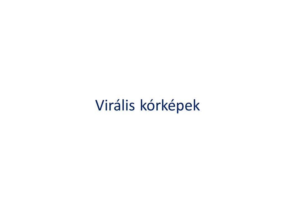 Virális kórképek
