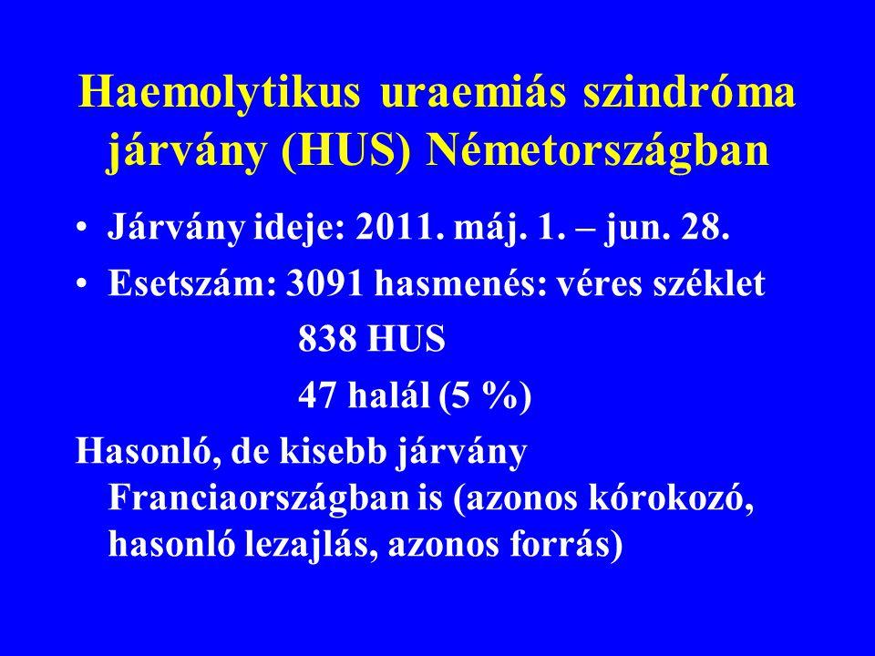 Haemolytikus uraemiás szindróma járvány (HUS) Németországban