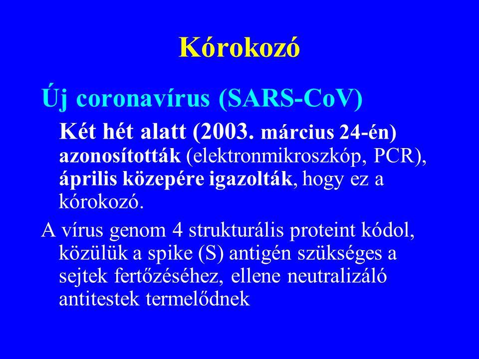Kórokozó Új coronavírus (SARS-CoV)