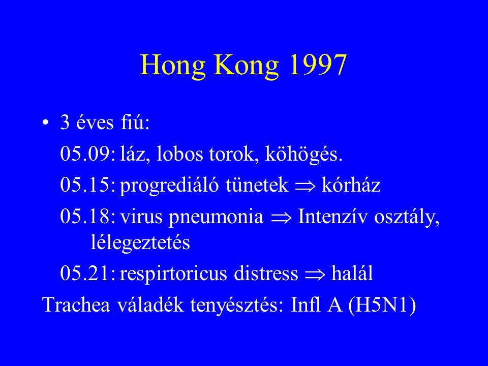 Hong Kong 1997 3 éves fiú: 05.09: láz, lobos torok, köhögés.