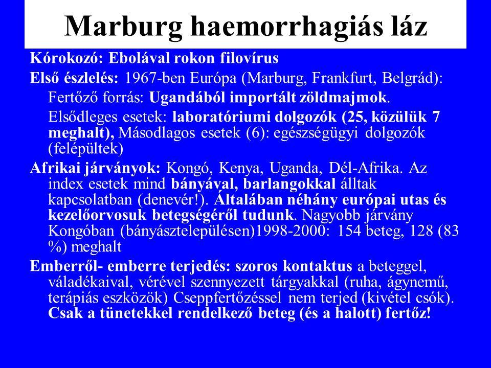 Marburg haemorrhagiás láz