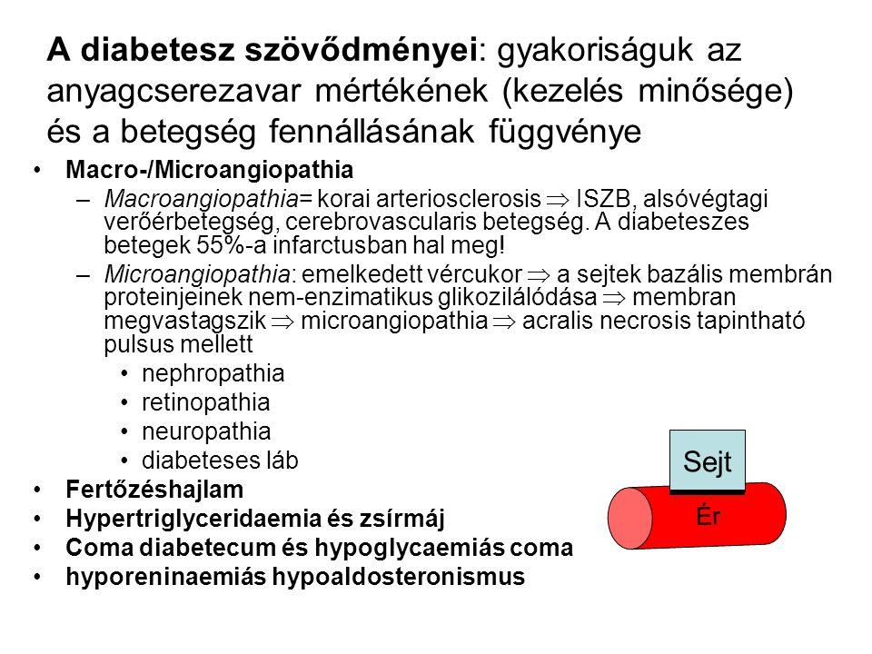A diabetesz szövődményei: gyakoriságuk az anyagcserezavar mértékének (kezelés minősége) és a betegség fennállásának függvénye
