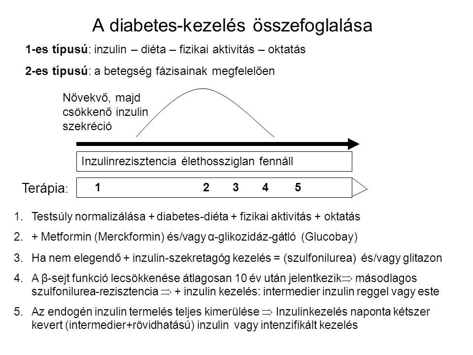 A diabetes-kezelés összefoglalása