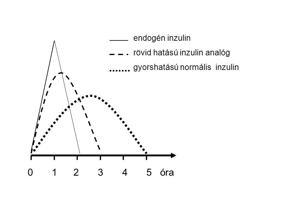 0 1 2 3 4 5 óra endogén inzulin rövid hatású inzulin analóg