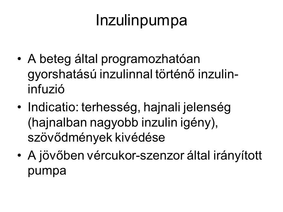 Inzulinpumpa A beteg által programozhatóan gyorshatású inzulinnal történő inzulin-infuzió.