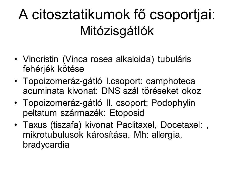 A citosztatikumok fő csoportjai: Mitózisgátlók