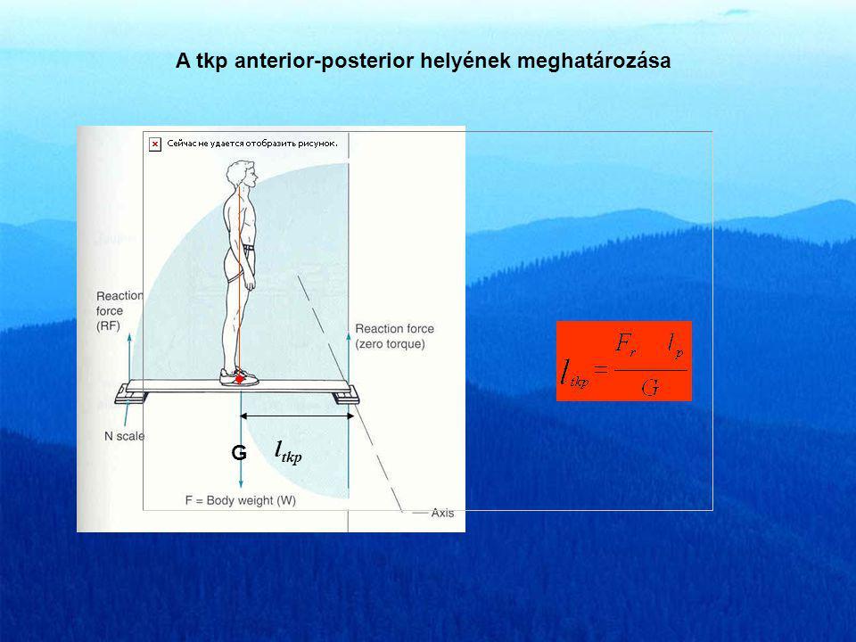 A tkp anterior-posterior helyének meghatározása