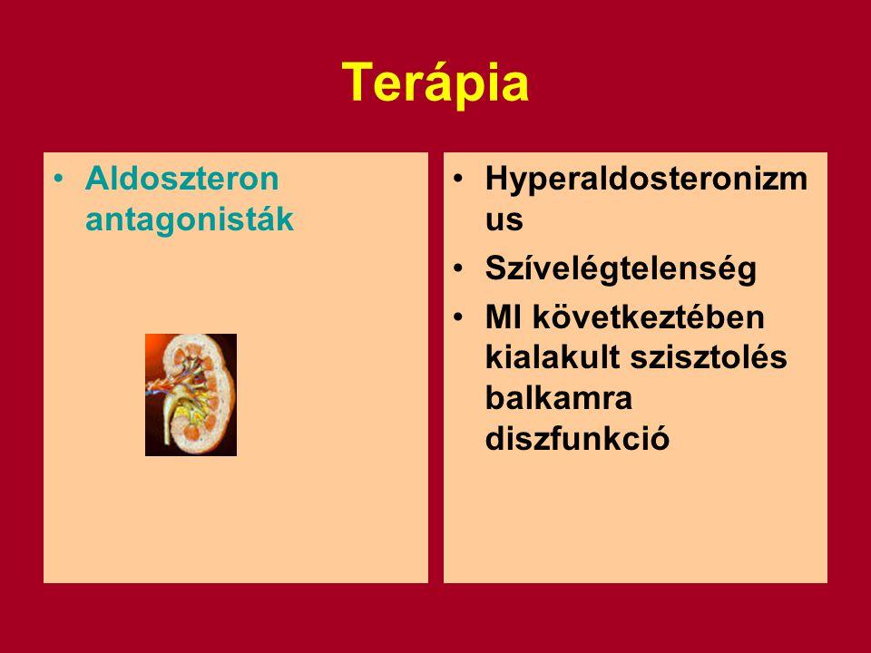 Terápia Aldoszteron antagonisták Hyperaldosteronizmus Szívelégtelenség