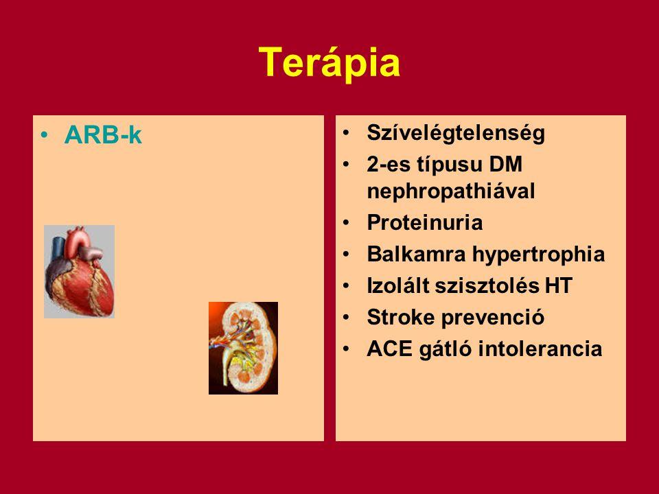 Terápia ARB-k Szívelégtelenség 2-es típusu DM nephropathiával