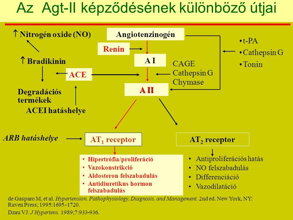Az Agt-II képződésének különböző útjai