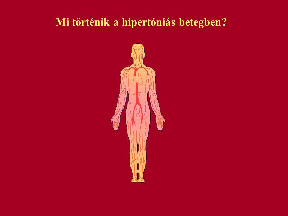 Mi történik a hipertóniás betegben