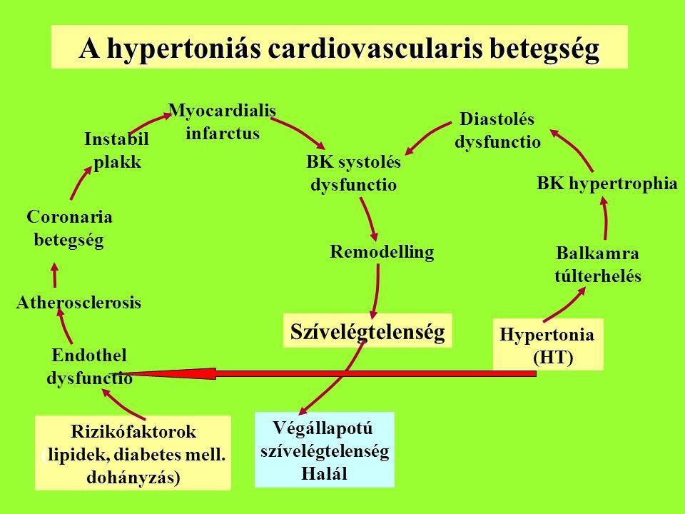 A hypertoniás cardiovascularis betegség (lipidek, diabetes mell.