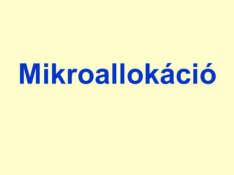 Mikroallokáció