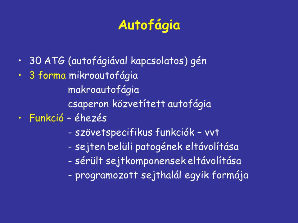 Autofágia 30 ATG (autofágiával kapcsolatos) gén 3 forma mikroautofágia