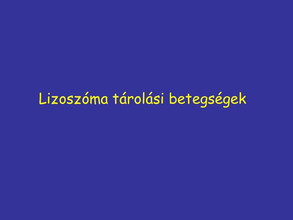 Lizoszóma tárolási betegségek