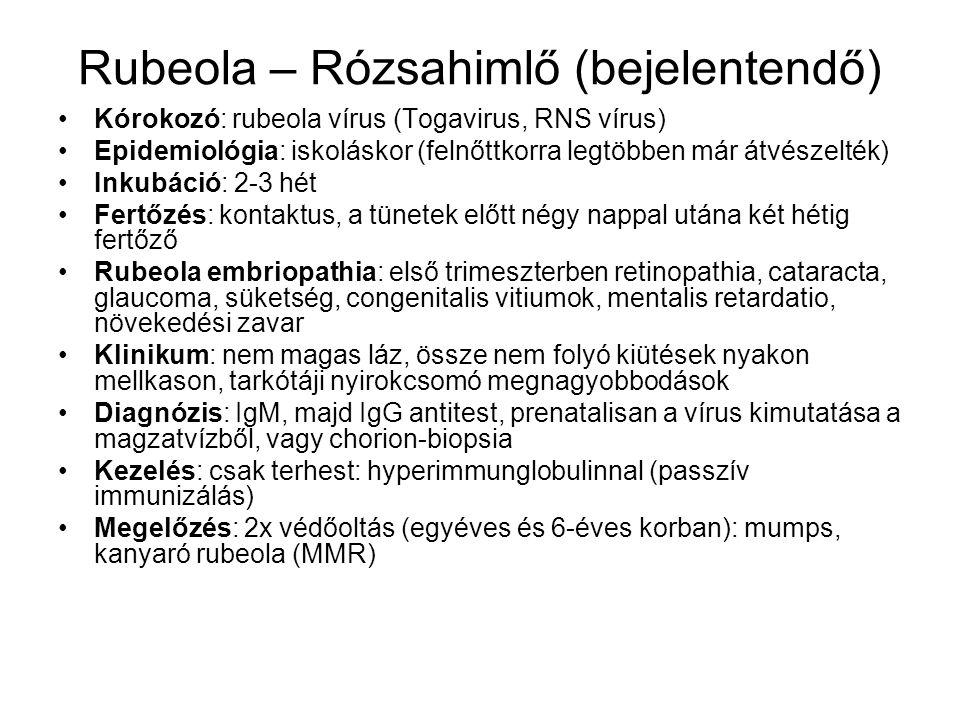 Rubeola – Rózsahimlő (bejelentendő)