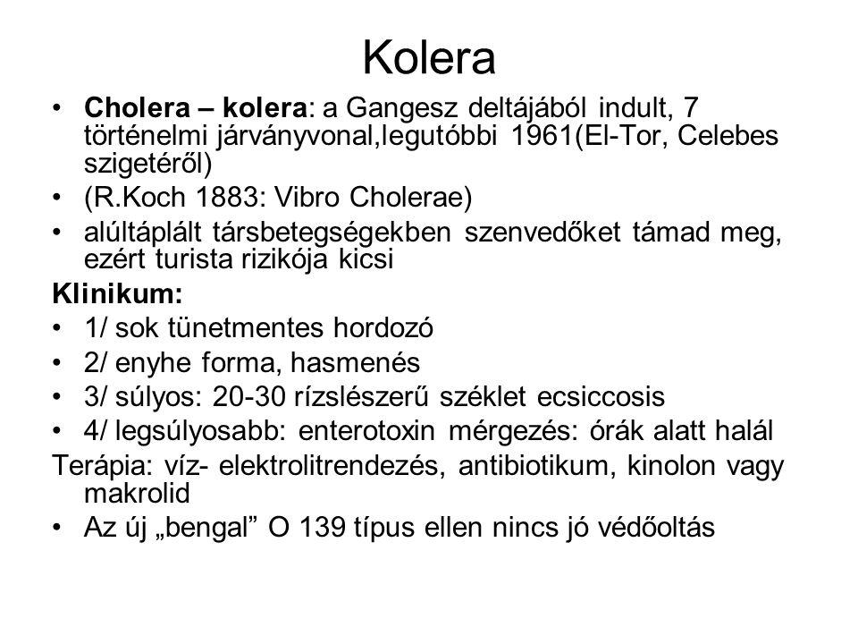Kolera Cholera – kolera: a Gangesz deltájából indult, 7 történelmi járványvonal,legutóbbi 1961(El-Tor, Celebes szigetéről)
