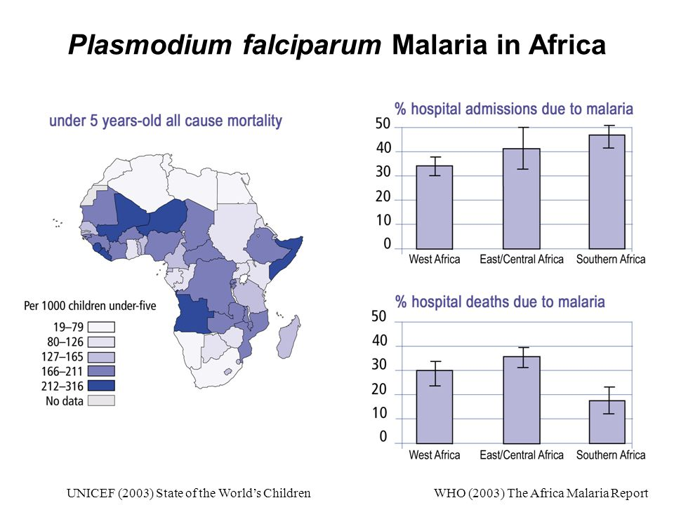 Plasmodium falciparum Malaria in Africa