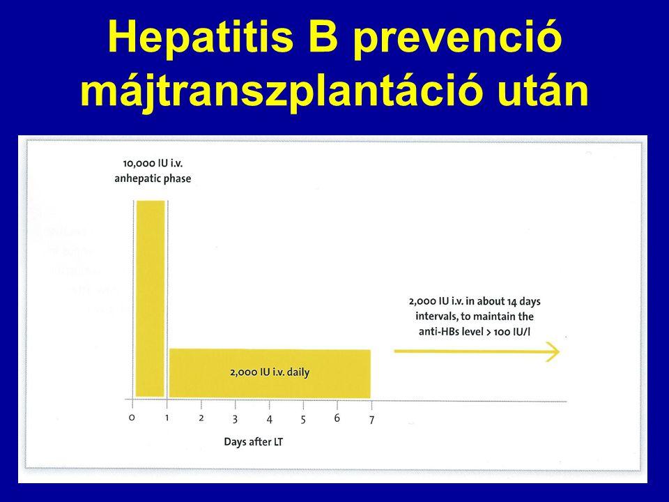 Hepatitis B prevenció májtranszplantáció után