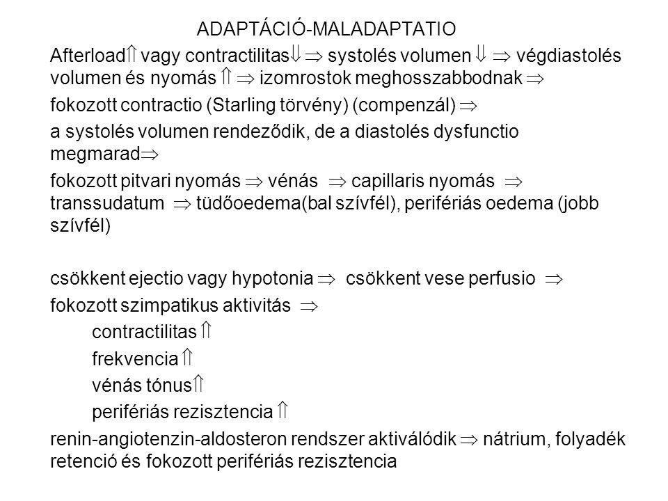 ADAPTÁCIÓ-MALADAPTATIO