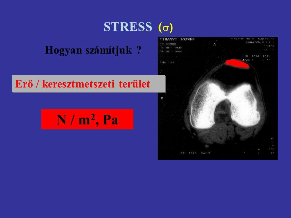 STRESS () Hogyan számítjuk Erő / keresztmetszeti terület N / m2, Pa
