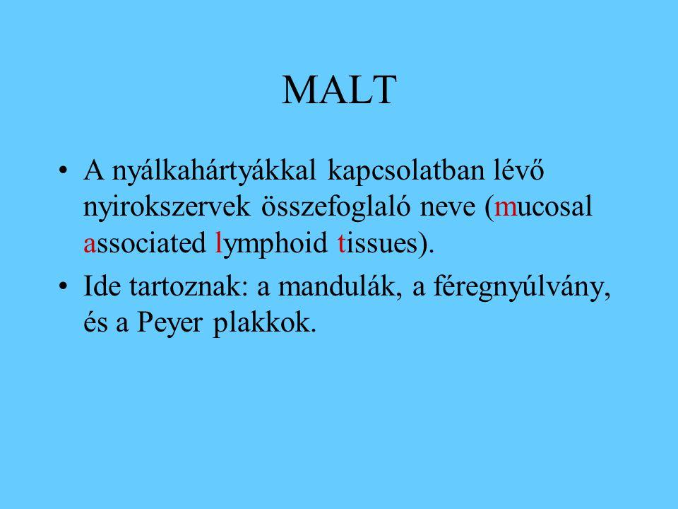 MALT A nyálkahártyákkal kapcsolatban lévő nyirokszervek összefoglaló neve (mucosal associated lymphoid tissues).