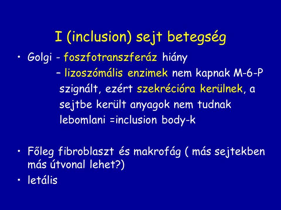 I (inclusion) sejt betegség