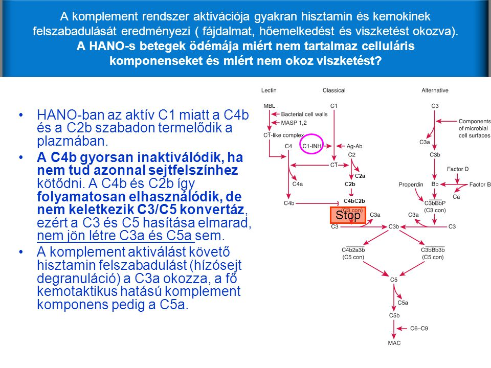A komplement rendszer aktivációja gyakran hisztamin és kemokinek felszabadulását eredményezi ( fájdalmat, hőemelkedést és viszketést okozva). A HANO-s betegek ödémája miért nem tartalmaz celluláris komponenseket és miért nem okoz viszketést