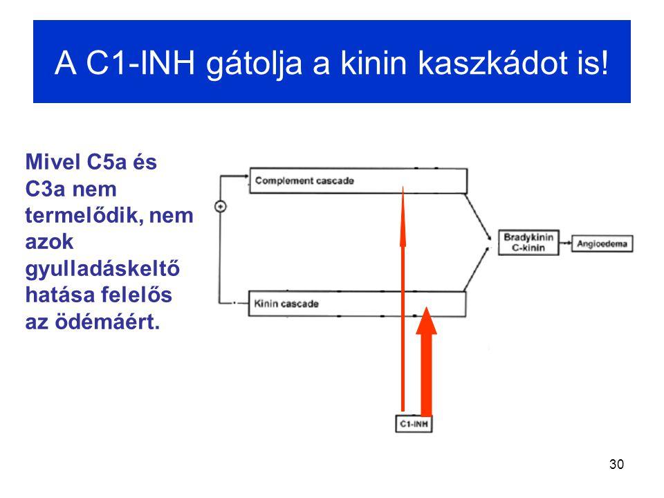 A C1-INH gátolja a kinin kaszkádot is!