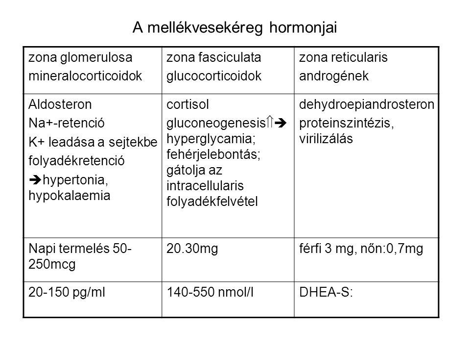 A mellékvesekéreg hormonjai