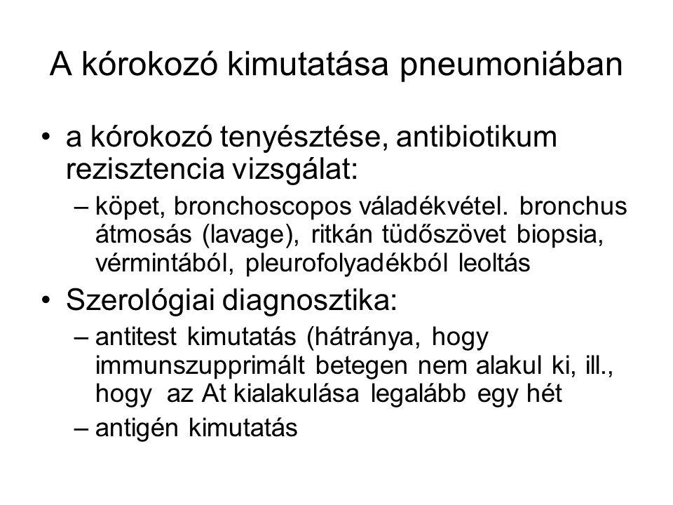 A kórokozó kimutatása pneumoniában