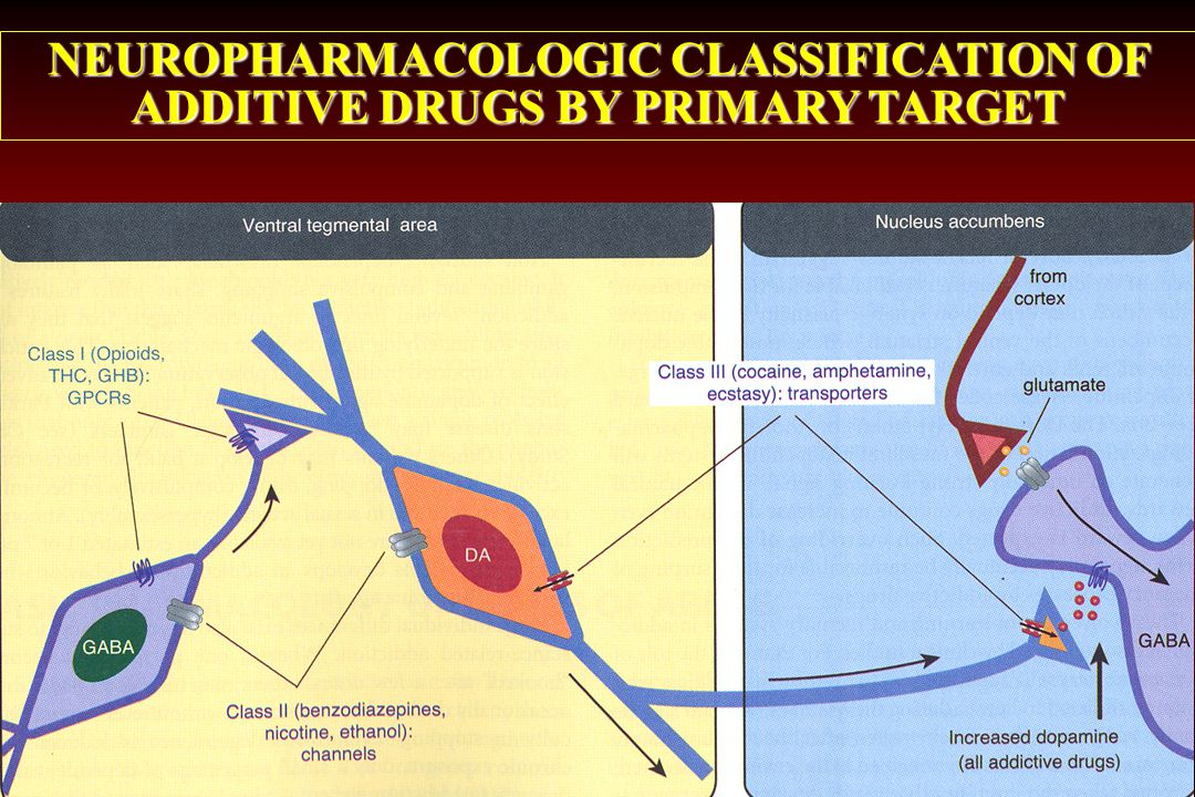 NEUROPHARMACOLOGIC CLASSIFICATION OF ADDITIVE DRUGS BY PRIMARY TARGET