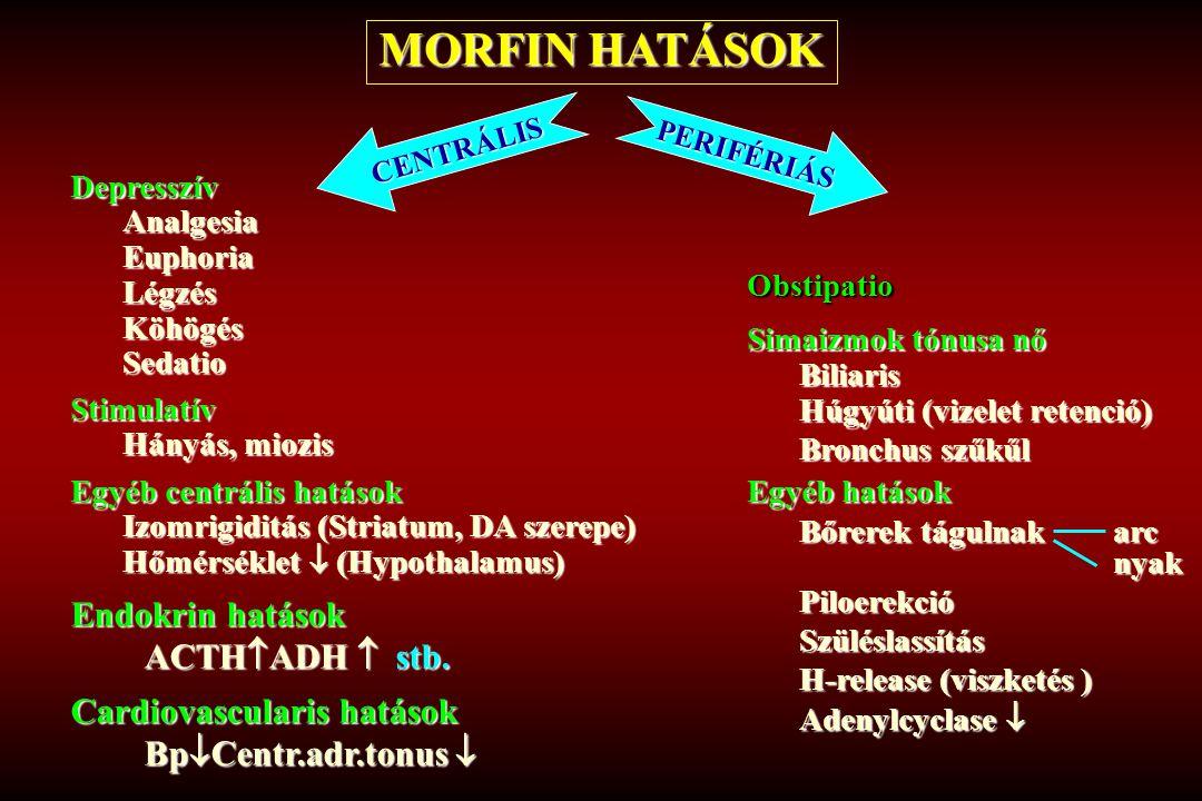 MORFIN HATÁSOK Endokrin hatások ACTHADH  stb.