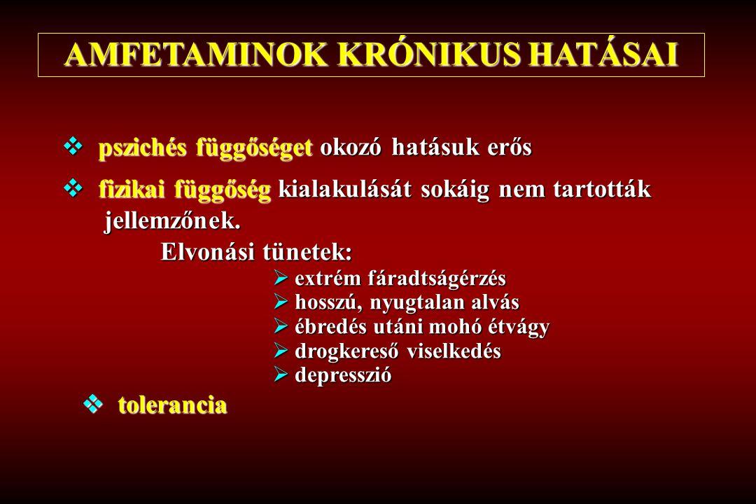 AMFETAMINOK KRÓNIKUS HATÁSAI