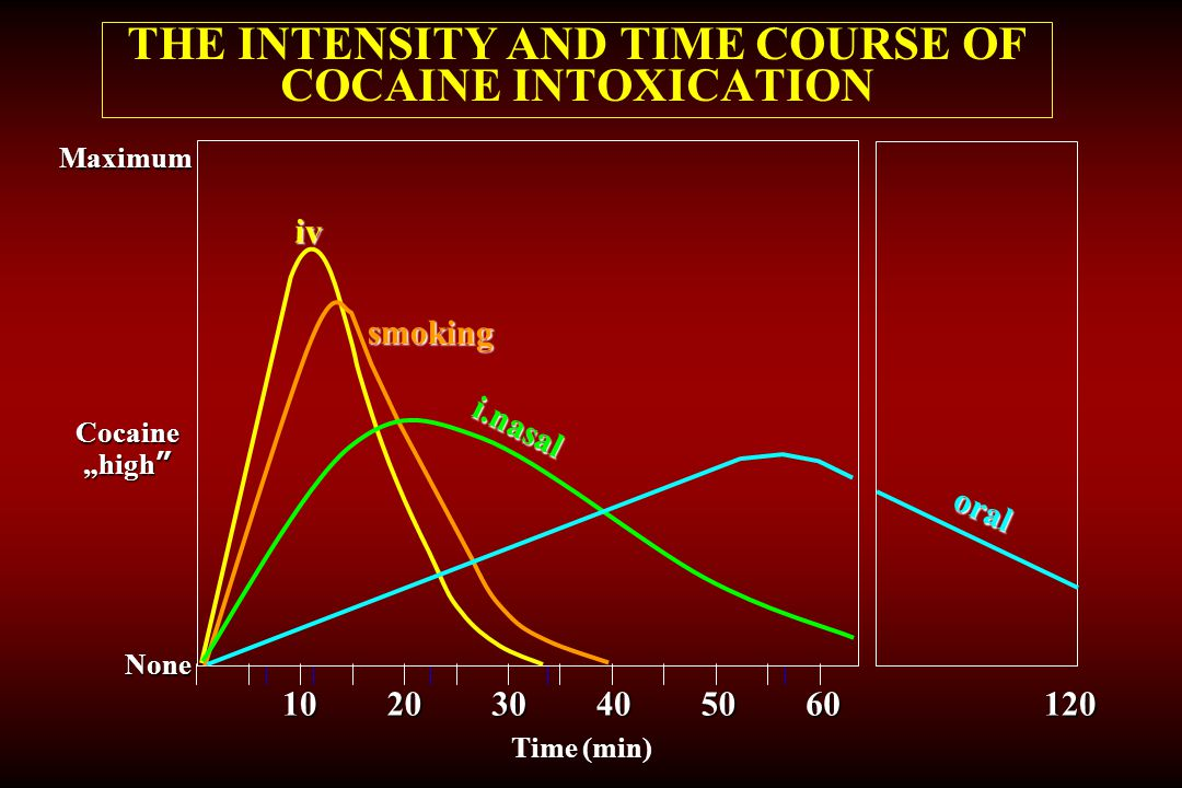 THE INTENSITY AND TIME COURSE OF COCAINE INTOXICATION