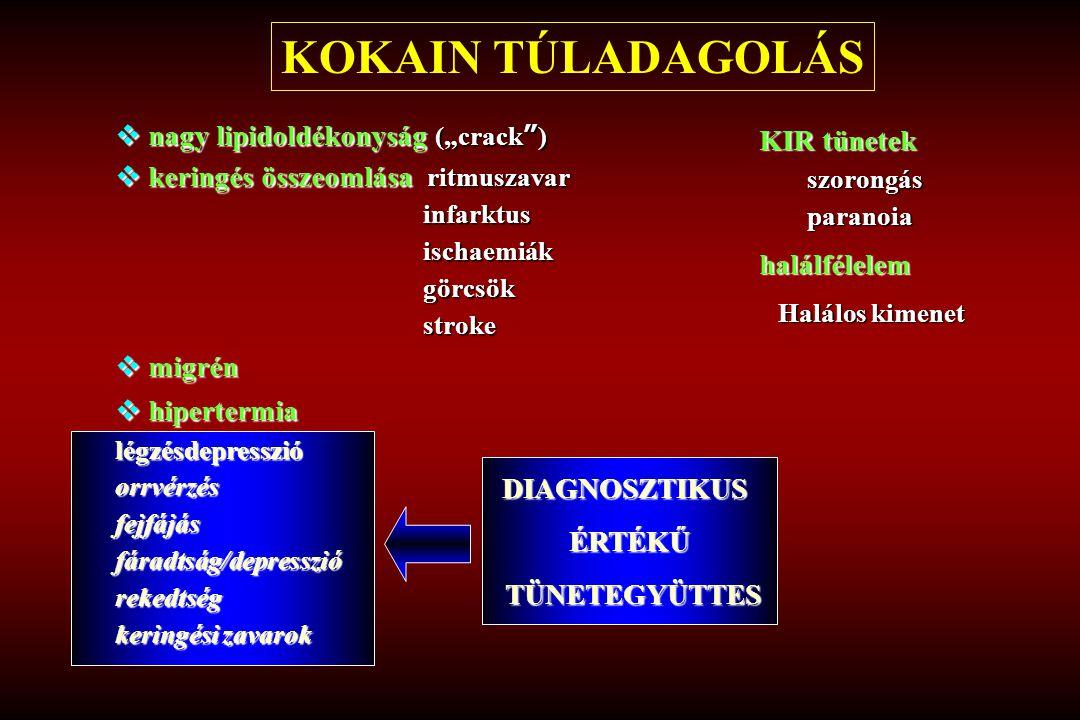 """KOKAIN TÚLADAGOLÁS nagy lipidoldékonyság (""""crack ) KIR tünetek"""