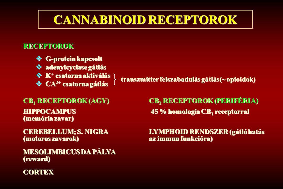 CANNABINOID RECEPTOROK