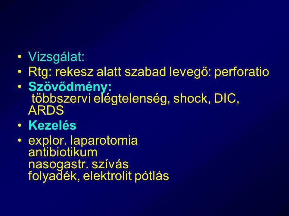 Vizsgálat: Rtg: rekesz alatt szabad levegő: perforatio. Szövődmény: többszervi elégtelenség, shock, DIC, ARDS.