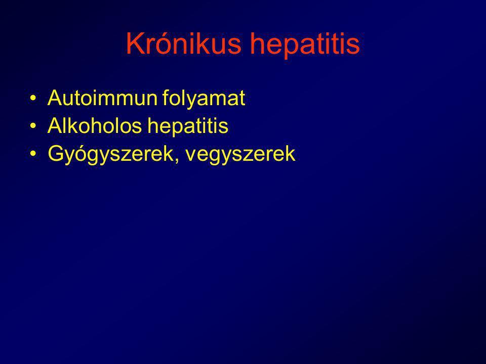Krónikus hepatitis Autoimmun folyamat Alkoholos hepatitis