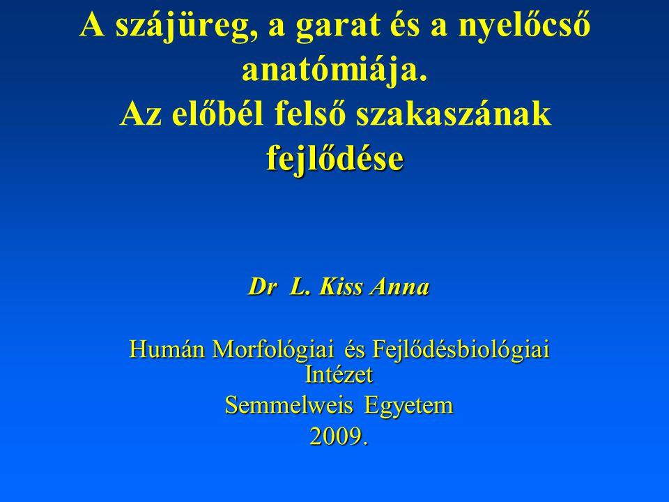 Humán Morfológiai és Fejlődésbiológiai Intézet