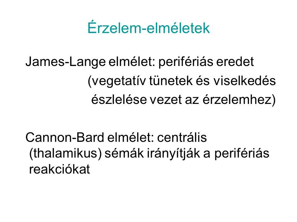 Érzelem-elméletek James-Lange elmélet: perifériás eredet