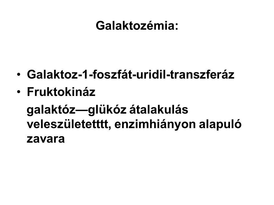 Galaktozémia: Galaktoz-1-foszfát-uridil-transzferáz.