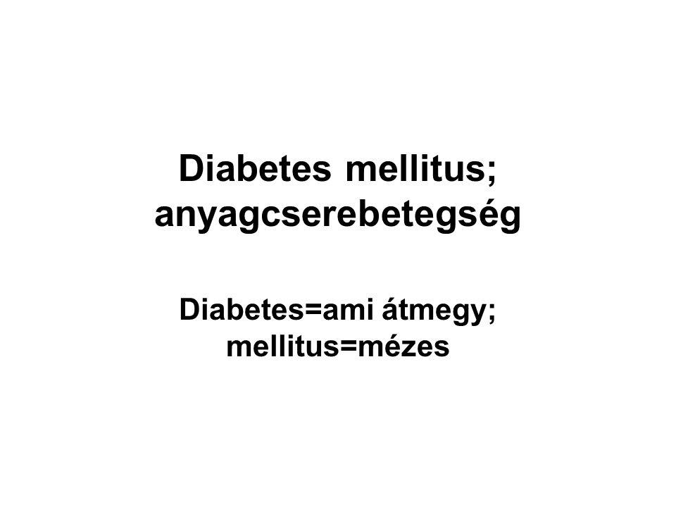Diabetes mellitus; anyagcserebetegség