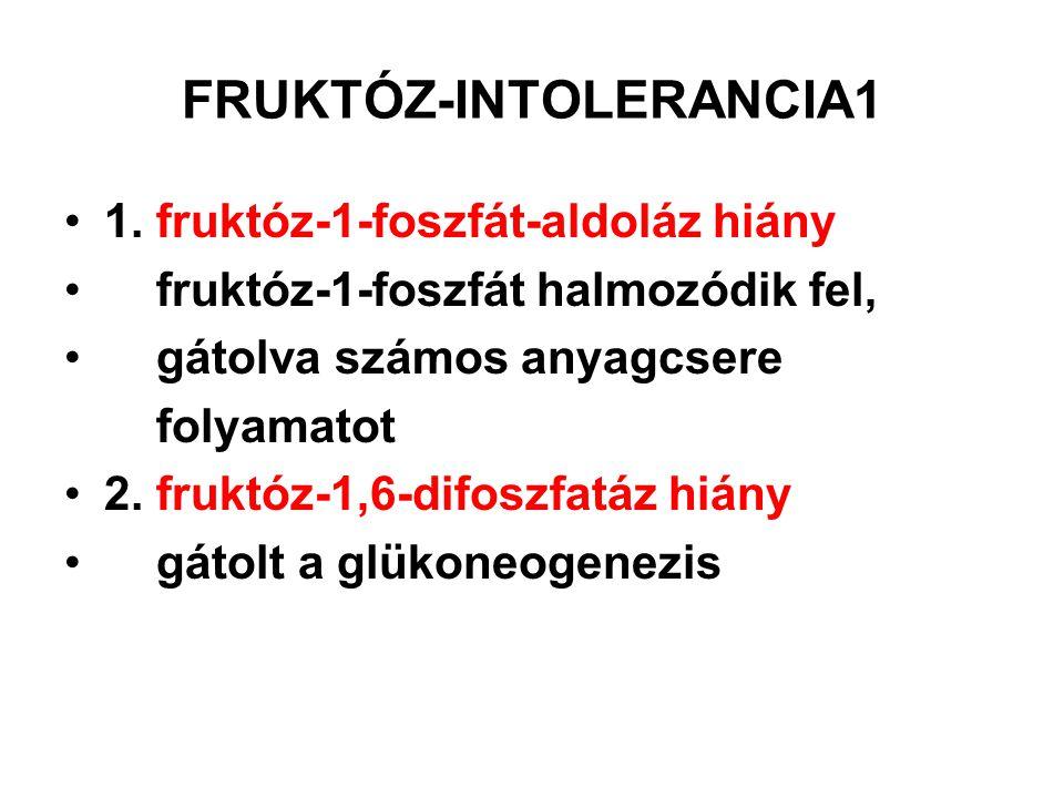 FRUKTÓZ-INTOLERANCIA1