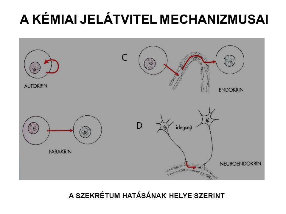 A KÉMIAI JELÁTVITEL MECHANIZMUSAI